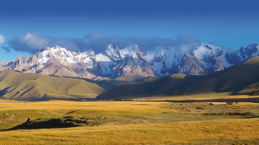 Министр высказался о продаже земли иностранцам в Казахстане